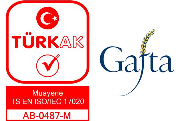 Aymak International Survey Co  Ltd